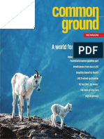 CG332 2019-04 Common Ground Magazine
