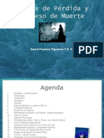 Etapas de Perdida y Proceso de Muerte - David Ftes -w slideshare net 102.ppt