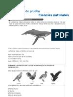 TALLER DE CIENCIAS NATURALES SABER