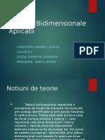 Tablouri Bidimensionale - Ciobotaru Catalin.pptx