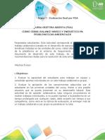 Anexo - Etapa 7 - Evaluación final por POA.docx