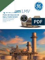 Quantum-LMV