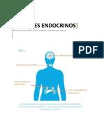 TUMORES ENDOCRINOS