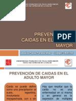 prevencindecaidaseneladultomayor-111125185014-phpapp02
