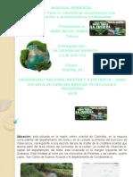 Unidad 2 Paso 3 Ecosistemas