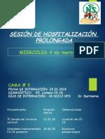 Estancia prolongada 04.03.20.pptx