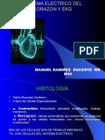 SISTEMA ELECTRICO DEL CORAZON Y EKG  PARA BIOMEDICA