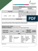 CA.DP.004 Descripción de Tecnología