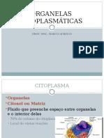 Aula 8 - Organelas celulares.pdf