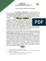 ACTIVIDAD 2------ORGANIZACIÓN NACIONAL INDÍGENA DE COLOMBIA----GRADO SEXTO