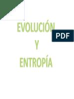 1.1 Entropia