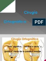 CirugiaOrtognatica.pdf