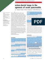 The acinar-ductal tango in the pathogenesis of acute pancreatitis