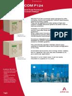 P124_en_0819.pdf