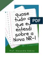 Nova NR 1 Comentada - Josiane do Socorro Q. de Souza