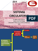 14 SEMANA - SISTEMA CIRCULATORIO
