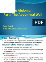 6 The Abdomen . Part I The Abdominal Wall