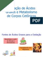 oxidaacidosgraxos Med_2010.ppt