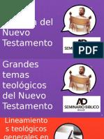 Grandes temas teológicos del Nuevo Testamento