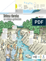 Defensa-riberenas-con-sistemas-agroforestales