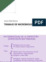 Trabajo de microbiología Jairo Martínez.pptx