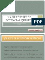 262288441-1-3-Gradiente-de-Potencial-Quimico.pptx