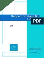 Rapport DE stage CIH.doc