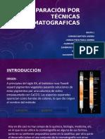 cromatografia expo.pptx
