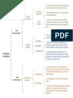 Mapa Sinoptico Paradigmas Sociologicos