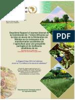 38119-doc-2019_biennial_review-fr.pdf