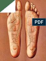 Reflexoterapia en pies
