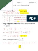 Problemas Resueltos de Algebra Superior y Lineal