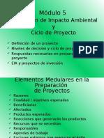 Mod 05 EIA y ciclo del proyecto