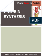Protein Synthesis Complete Powerpoint