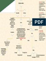 Map a Conceptual Pedro Guevara