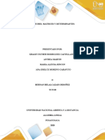 Tarea 1 - Vectores matrices y determinantes (1)