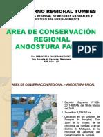 Area de Conservación Regional - AF power point