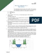 PD1-Flujo Uniforme 15-2 (1).docx