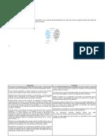 ACTIVACIÓN DE CONOCIMIENTOS PREVIOS.pdf
