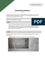 8 Proceso de Fabricacion Habitual de Mascarillas Higienicas V4.0