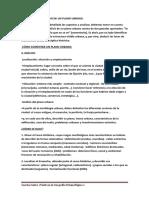 PRACTICAS_DE_GEOGRAFIA_URBANA (1).pdf