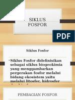 SIKLUS FOSFOR POWER POINT