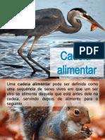 expl8_cadeia_alimentarCN8.pptx