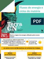 Fluxos_de_energia_e_ciclos_de_matéria_(ESTE.ppt