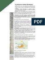 ARCHITECTURE_DURABLE_ET_ENERGIE_SOLAIRE.pdf