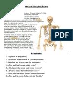 4-bsico-sistema-esqueltico-ac-cientifica (1)