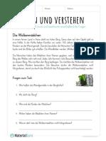 arbeitsblatt-lesen-und-verstehen-wolkenmaedchen