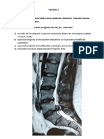 950235_V-1_Neuroimagistica