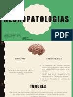neuropatologias 231.pptx