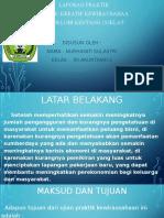 LAPORAN POWERPOINT NUR.pptx